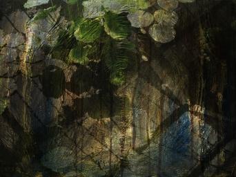 Tryste Kew