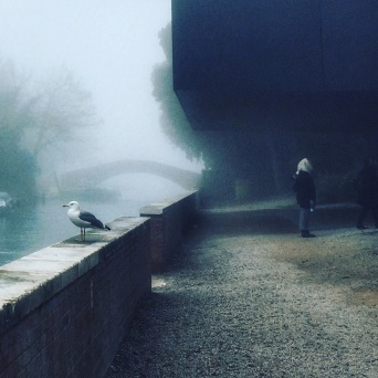 The Gull, The Fog, The Woman, Venice